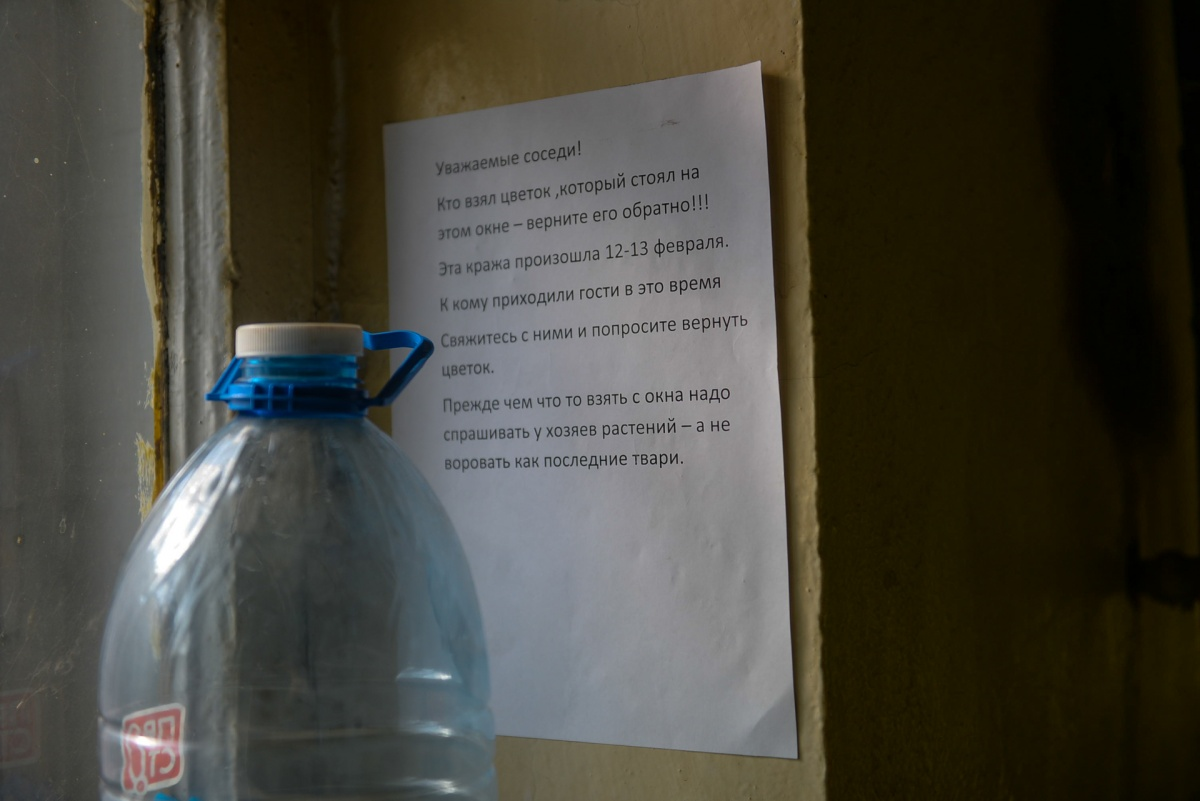 Кто-то украл цветок, который поставила в коридоре Наталья Николаевна