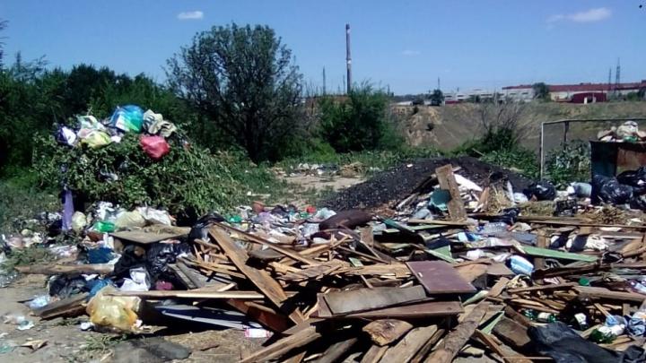 «Мог выбросить недобросовестный водитель»: регоператор переложил вину за свалку на севере Волгограда