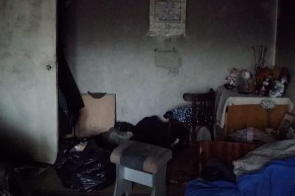 Жильцы превратили квартиру в Ярославле в помойку