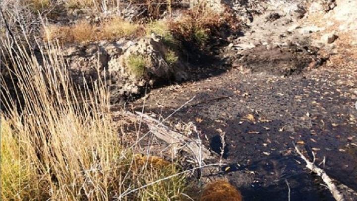 «Отходов в 1760 раз выше нормы: в Волгограде полгода добивались закрытия нефтяного мини-завода
