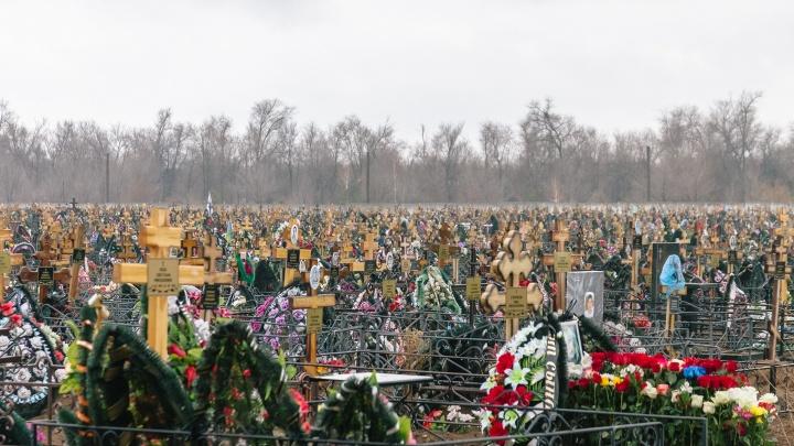 «Возим на кремацию в Москву»: чиновники хотят найти площадку для крематория в Самаре в 2020 году