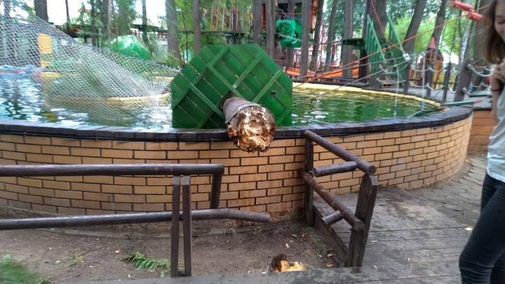 «Мы сами решили свалить столб»: в парке Горького объяснили, почему сломался «Веревочный парк»