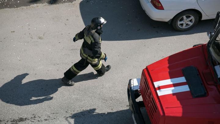 Пожарные вывели восемь человек из горящей 17-этажки