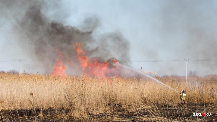 С 25 по 27 июня в Ростове ожидают чрезвычайную пожароопасность