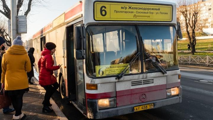 Красный с символикой звериного стиля: пермяки выбрали единый дизайн городских автобусов