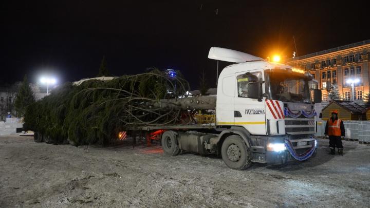 В прямом эфире на E1.RU встретили гигантскую новогоднюю ёлку в Екатеринбурге