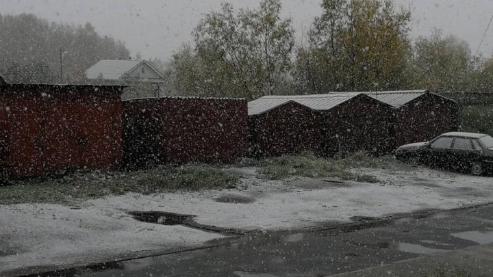 В Архангельске выпал первый снег. Ждать ли его снова в ближайшие дни?