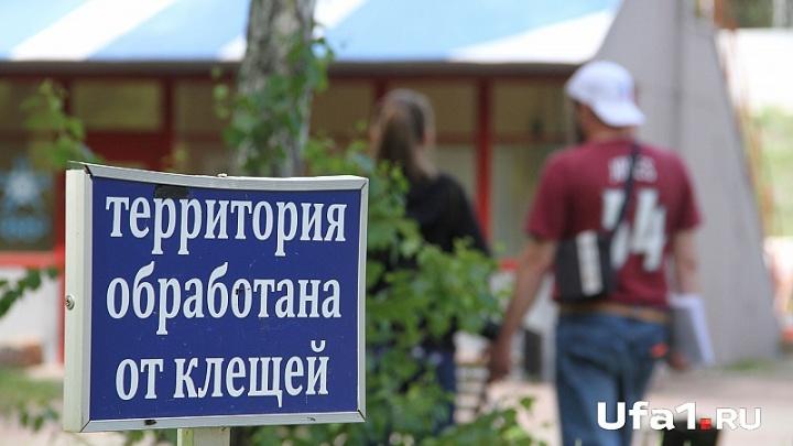 В Башкирии от укусов клещей пострадали почти десять тысяч человек