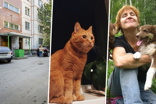 Галина Клебче (на фото справа) обратилась к полицейским, когда узнала, что к убийству рыжего кота Мартина может быть причастна бывшая волонтёр приюта
