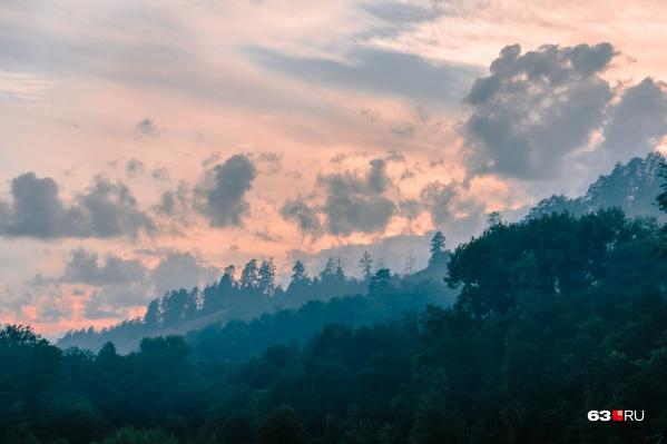 Чиновники решили беречь лес с помощью запретов