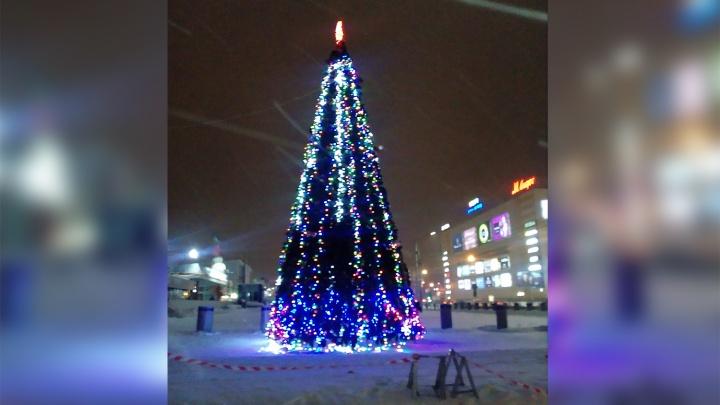 В центре Новосибирска зажгли новогоднюю ёлку