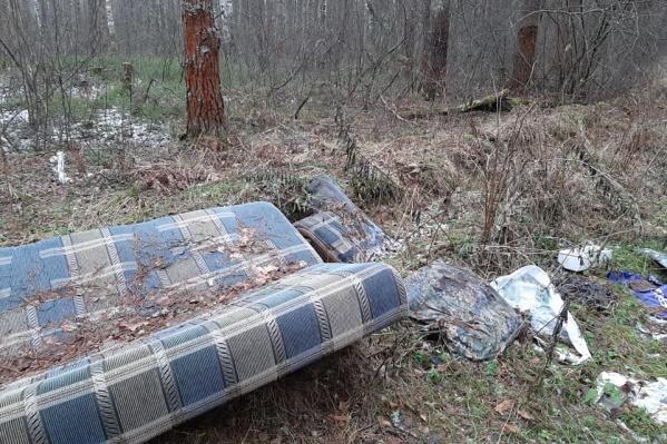 Кто-то умудрился притащить в лес даже диван