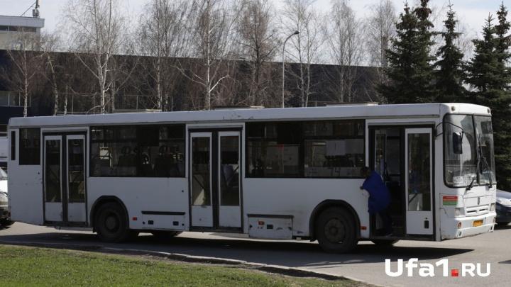 По улицам Севастополя будут разъезжать 25 новых автобусов НефАЗ