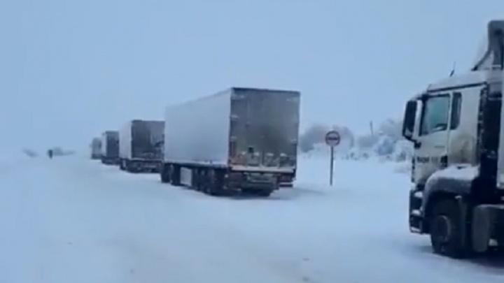 «Бросило нас правительство»: дальнобойщики из разных регионов застряли на трассе под Волгоградом