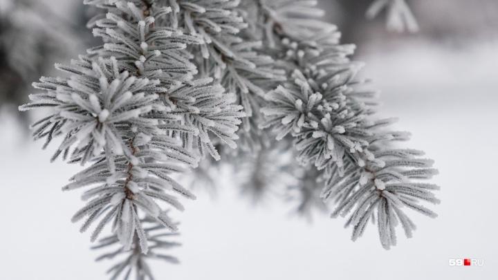Будет гололёд: МЧС предупредило об ухудшении погоды в Прикамье