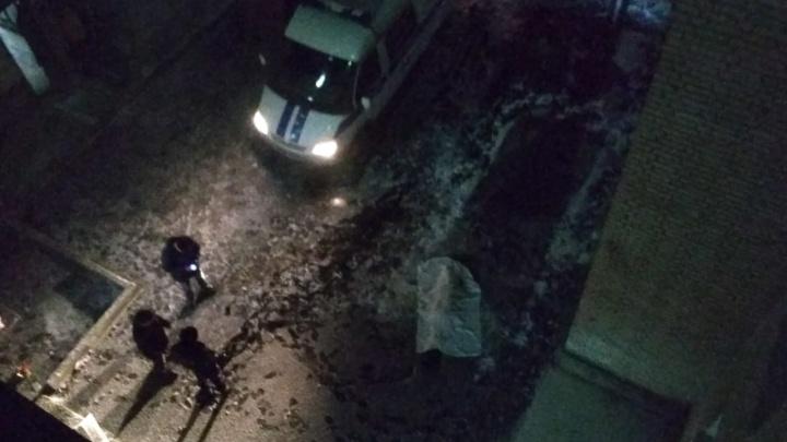 В Академгородке из окна 9-го этажа общежития НГУ выпала женщина