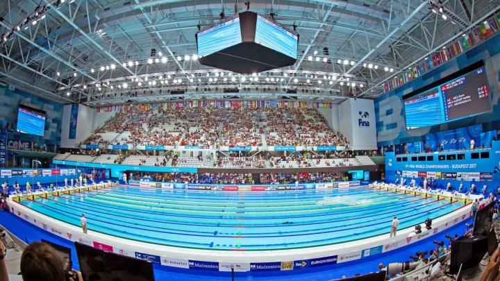Проиграли рекордсменам мира: волгоградцы стали бронзовыми призерами ЧМ-2018 по плаванию