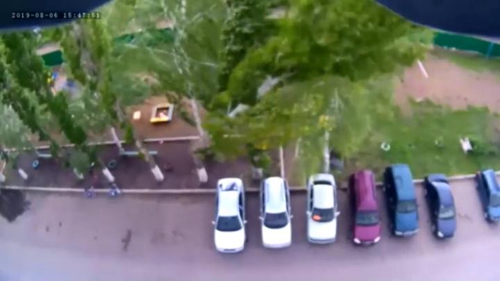 В Стерлитамаке дерево раздавило автомобили — момент падения попал на видео