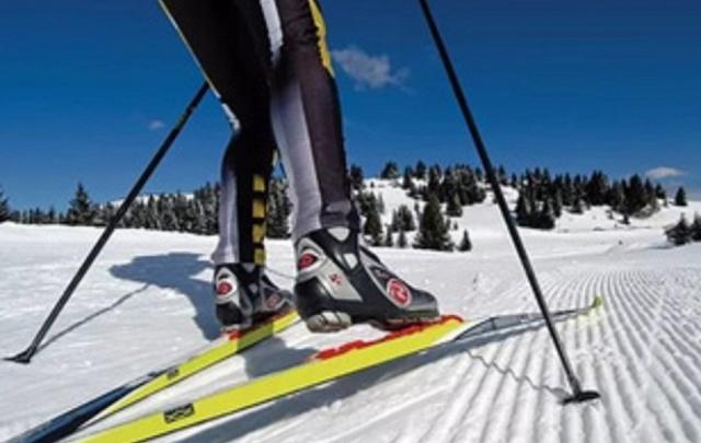 На старт массовых гонок «Курганская лыжня – 2017» вышли 339 человек