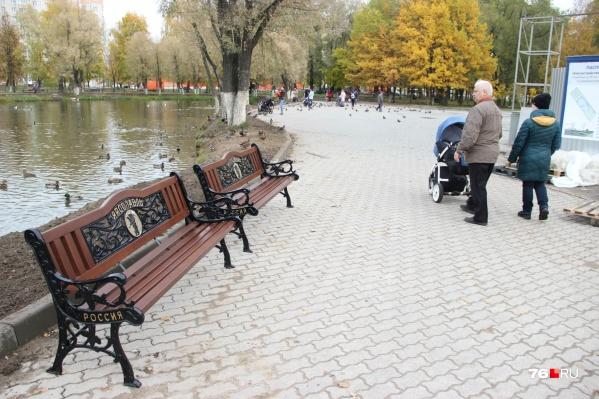 В парке 30-летия Победы в Ярославле вандалы выкинули скамейки в пруд