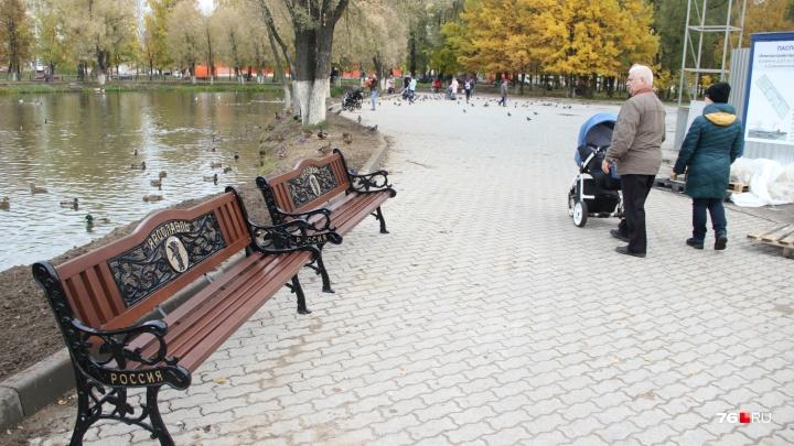 Скамейки в пруду: вандалы разгромили только что благоустроенный парк в Ярославле