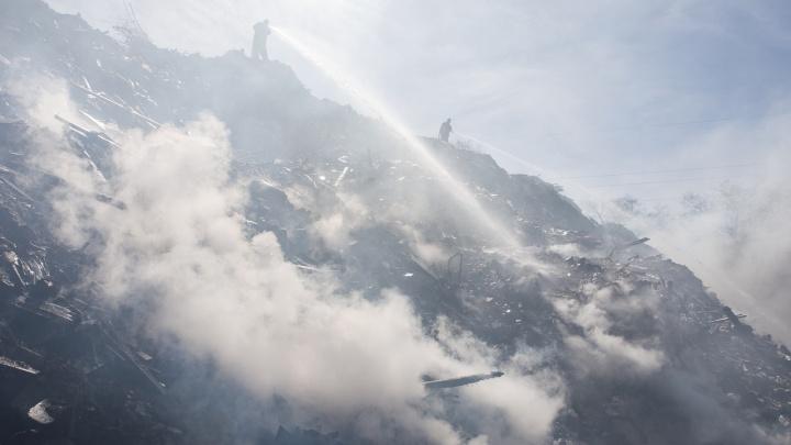 «Она горит по несколько раз в году»: волгоградцы 30 лет задыхаются вблизи стихийной свалки