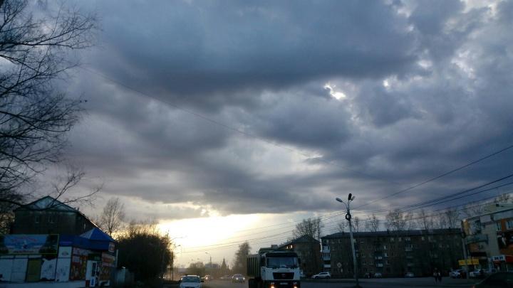 МЧС сообщило об усилении ветра в Омске и области
