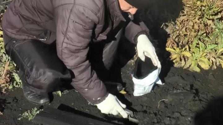 В Самарской области пашню залило нефтью