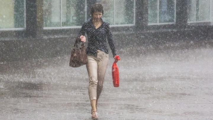 «Температура ниже нормы»: в Новосибирске будет прохладно и дождливо