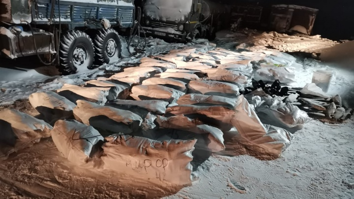 Среди жилых домов на севере края нашли контейнер, забитый 2 тоннами ценной рыбы