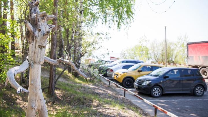 Новосибирцам запретят парковаться на подъезде к пляжу «Звезда»