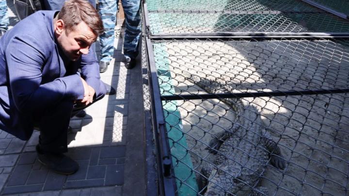 В Ростовской области заключенные показали крокодила члену общественной палаты РФ