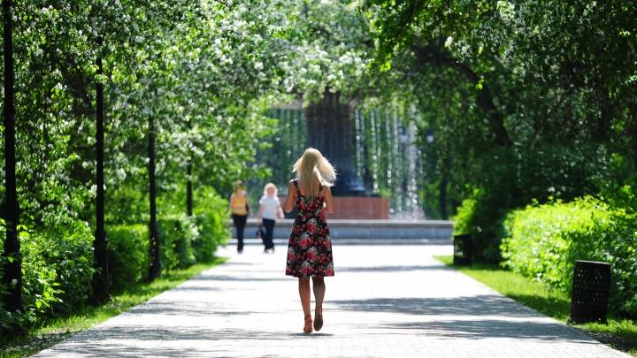 К выходным в Екатеринбурге заметно потеплеет
