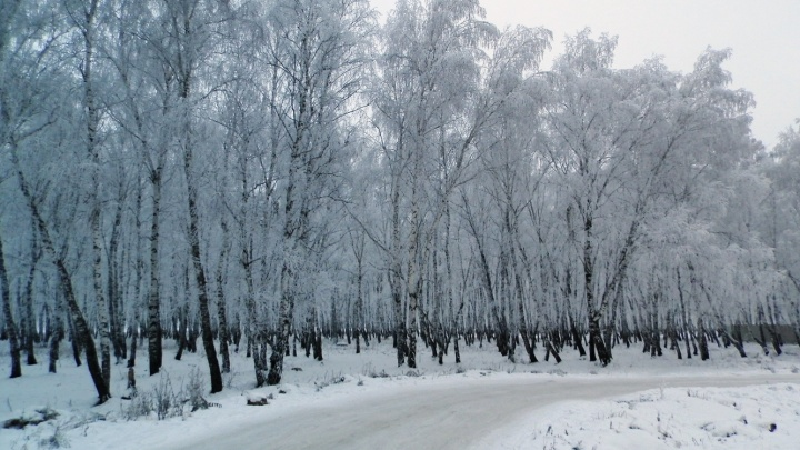 В Омской области из-за морозов ограничили движение в сторону Казахстана