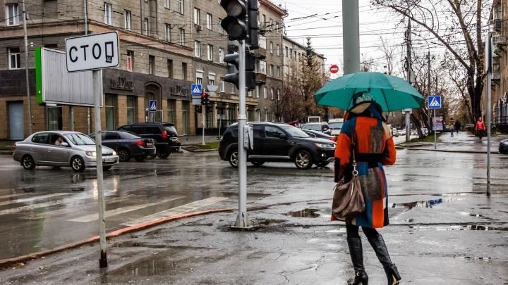 На Новосибирск надвигается дождь с мокрым снегом