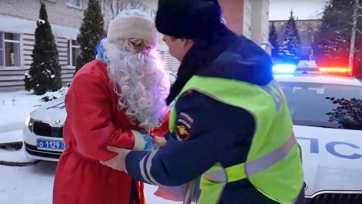 Челябинская полиция сняла новогодний ролик. В нём «поёт» конь, а из новых SKODA ДПС «собрали» ёлку