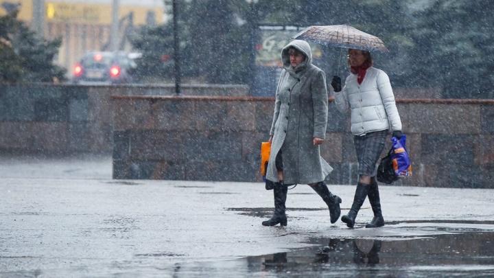 Сырость и хмарь вместо зимней сказки: накануне Нового года Волгоград оттает и промокнет под дождем