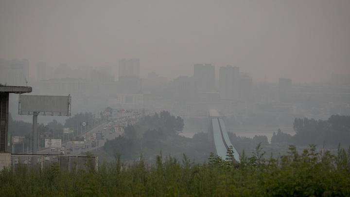 «Что за дым сейчас»: новосибирцы бросились искать информацию о смоге в поисковиках