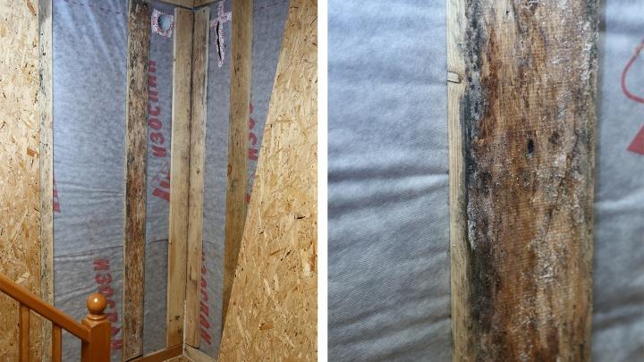 Построить и сразу снести: сибиряк отсудил 1,2 млн с застройщика за сгнивший дом