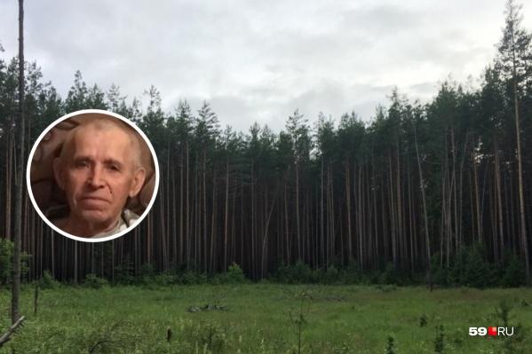 Пенсионер ушел в лес и заблудился