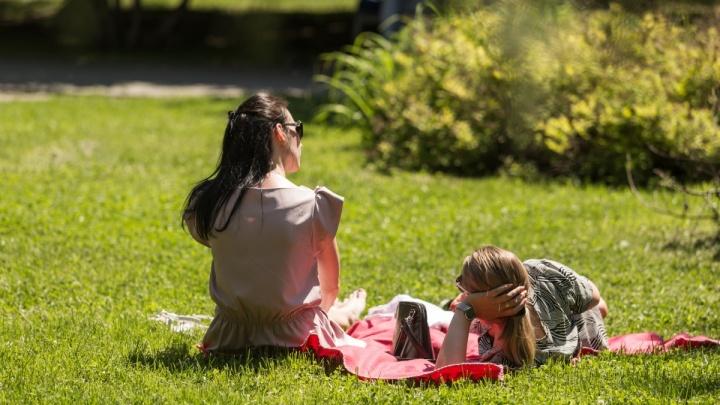 Жара сбивает с ног: как новосибирцы наслаждаются жарой в рабочий день