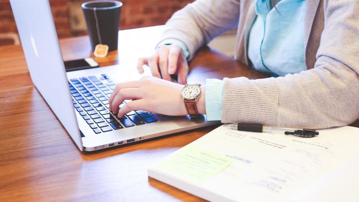 В Прикамье студенты смогут найти работу на лето с помощью банка вакансий