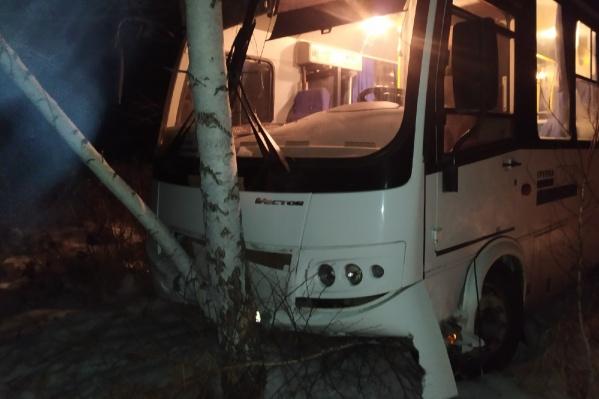 Пассажирский автобус съехал с дороги и врезался в березу. Пострадали водитель и пятеро пассажиров