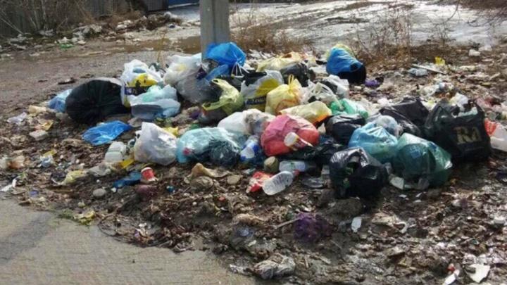 «Мы платим за жуткую вонь»: мусор в Волгограде после потепления превратился в химическое оружие