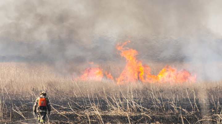 На 20 миллионов рублей оштрафовали жителей Ростовской области за природные пожары