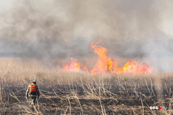 Чаще всего природные пожары в этом году происходят в Ростове и Таганроге