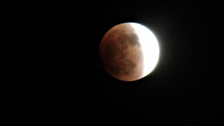 Взойдёт кровавая Луна: новосибирцы смогут увидеть самое долгое лунное затмение за 100 лет