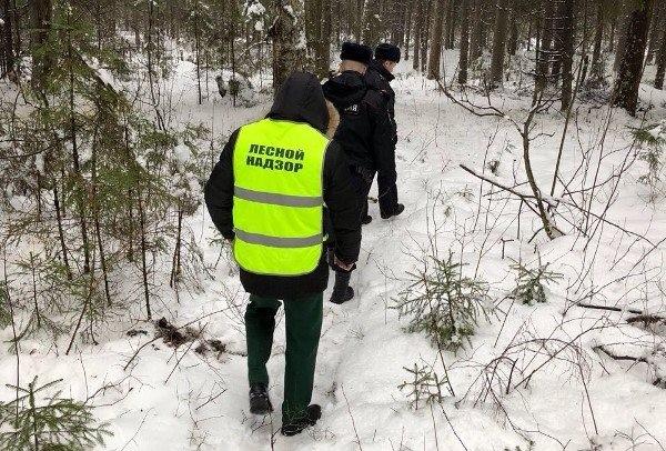 Вместе с новогодними патрульными будут ходить сотрудники полиции