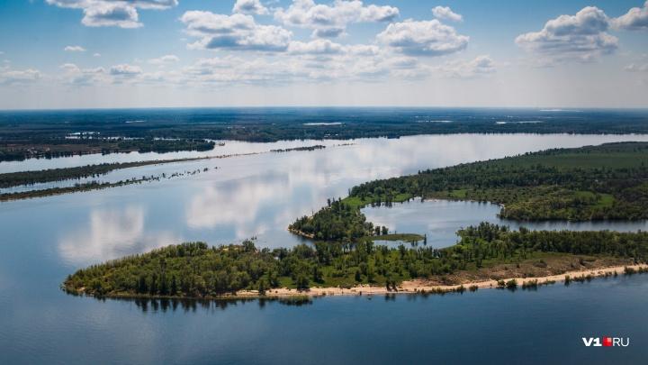 Новый канал, ГЭС, плотины и лиман: показываем, как будут спасать Волго-Ахтубинскую пойму
