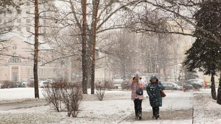 Огромные хлопья снега накрыли Ярославль: фоторепортаж с белых улиц